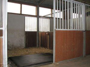 gemistete Pferdebox mit Softbett